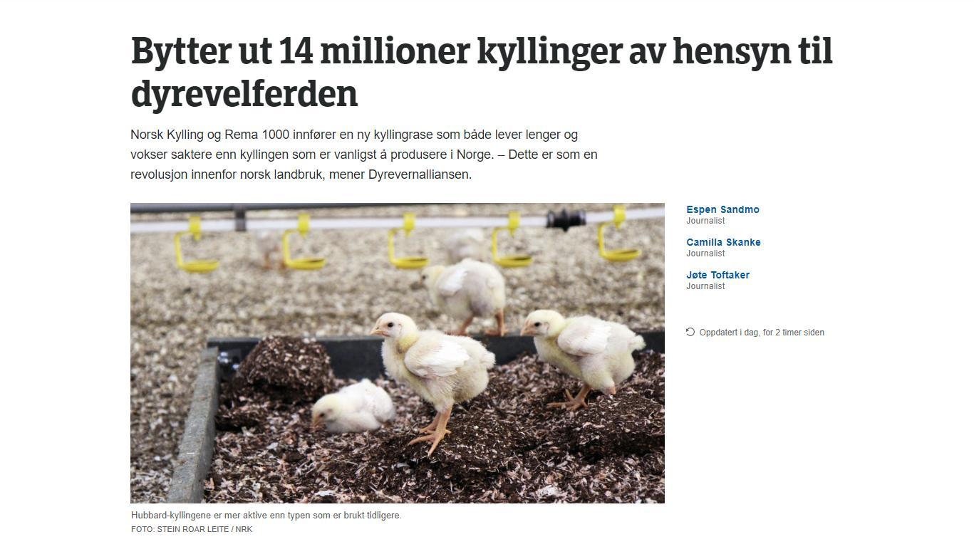 """17f2455a Det føles nesten absurd å starte en artikkel med overskriften """"Kjøp kylling  på Rema 1000"""" med tanke på problematikken rundt dyrevelferd og miljø."""